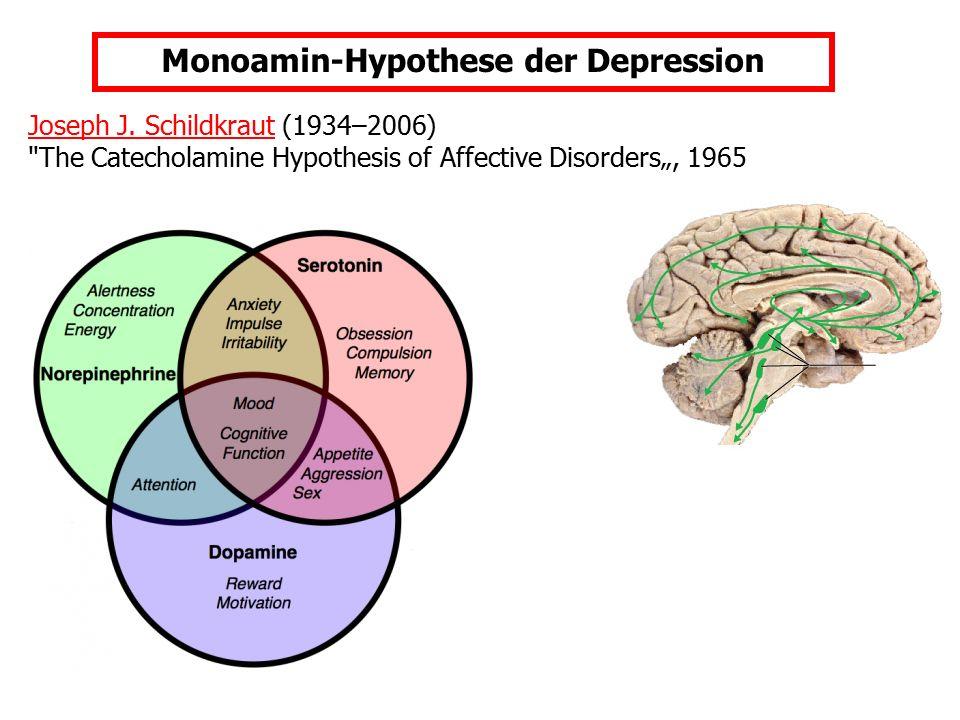 Monoamin-Hypothese der Depression
