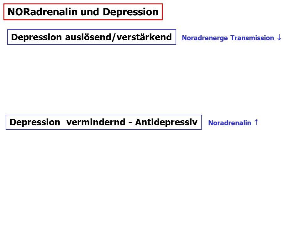 NORadrenalin und Depression