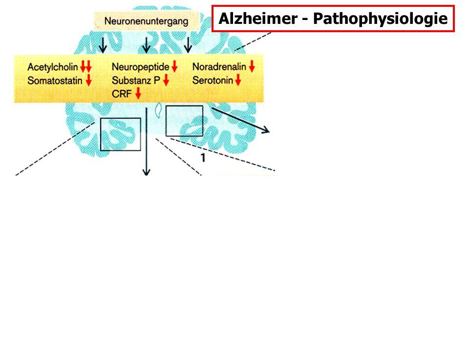 Alzheimer - Pathophysiologie