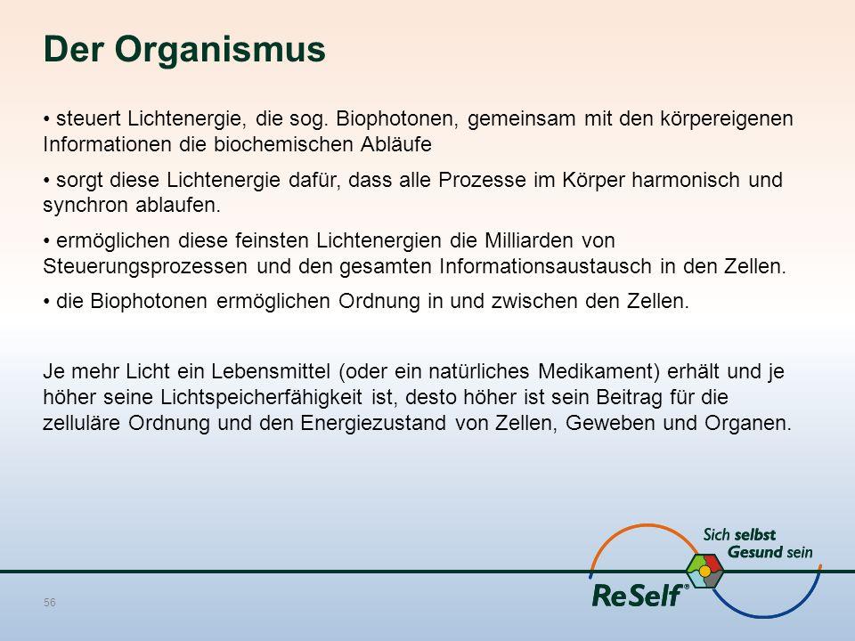 Der Organismus steuert Lichtenergie, die sog. Biophotonen, gemeinsam mit den körpereigenen Informationen die biochemischen Abläufe.