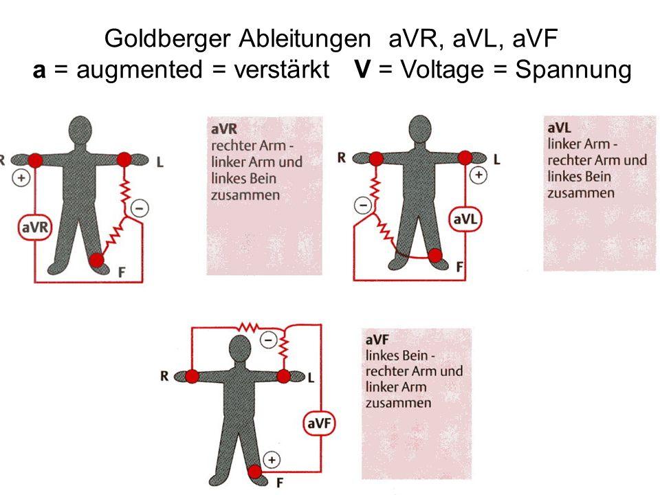 Goldberger Ableitungen aVR, aVL, aVF
