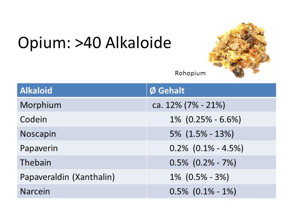 Opium: >40 Alkaloide Alkaloid Ø Gehalt Morphium ca. 12% (7% - 21%)