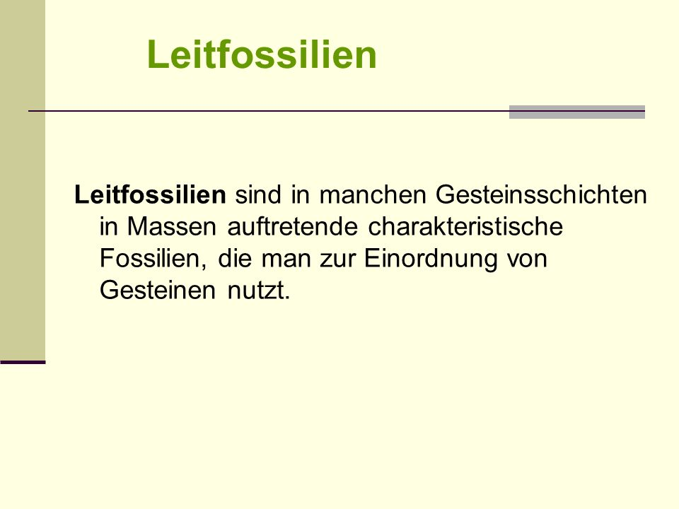 Leitfossilien