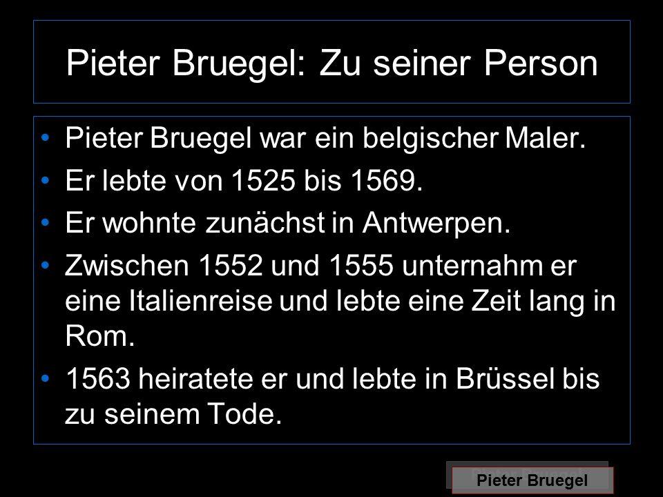 Pieter Bruegel: Zu seiner Person