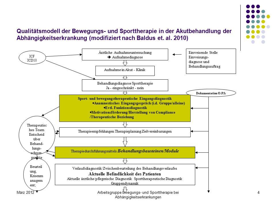 Qualitätsmodell der Bewegungs- und Sporttherapie in der Akutbehandlung der Abhängigkeitserkrankung (modifiziert nach Baldus et. al. 2010)