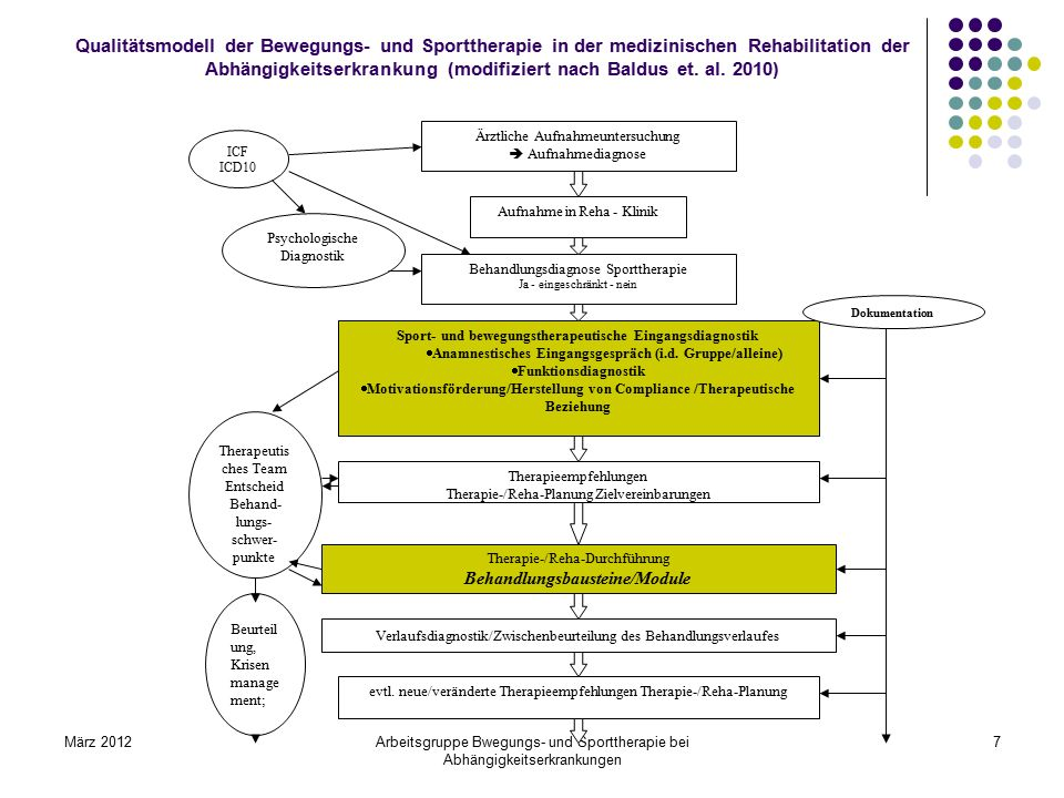Qualitätsmodell der Bewegungs- und Sporttherapie in der medizinischen Rehabilitation der Abhängigkeitserkrankung (modifiziert nach Baldus et. al. 2010)