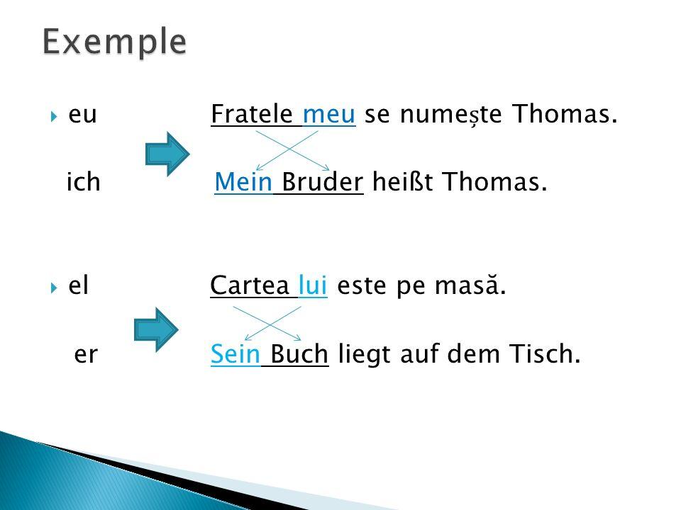 Exemple eu Fratele meu se numește Thomas.