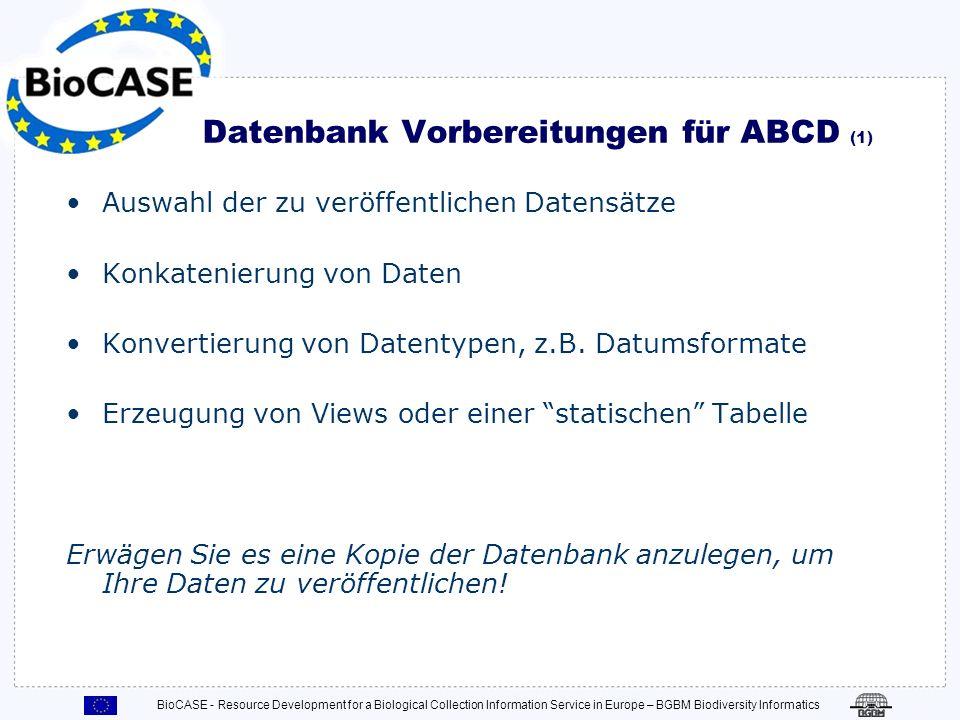 Datenbank Vorbereitungen für ABCD (1)