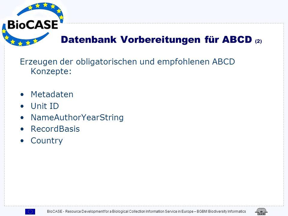 Datenbank Vorbereitungen für ABCD (2)