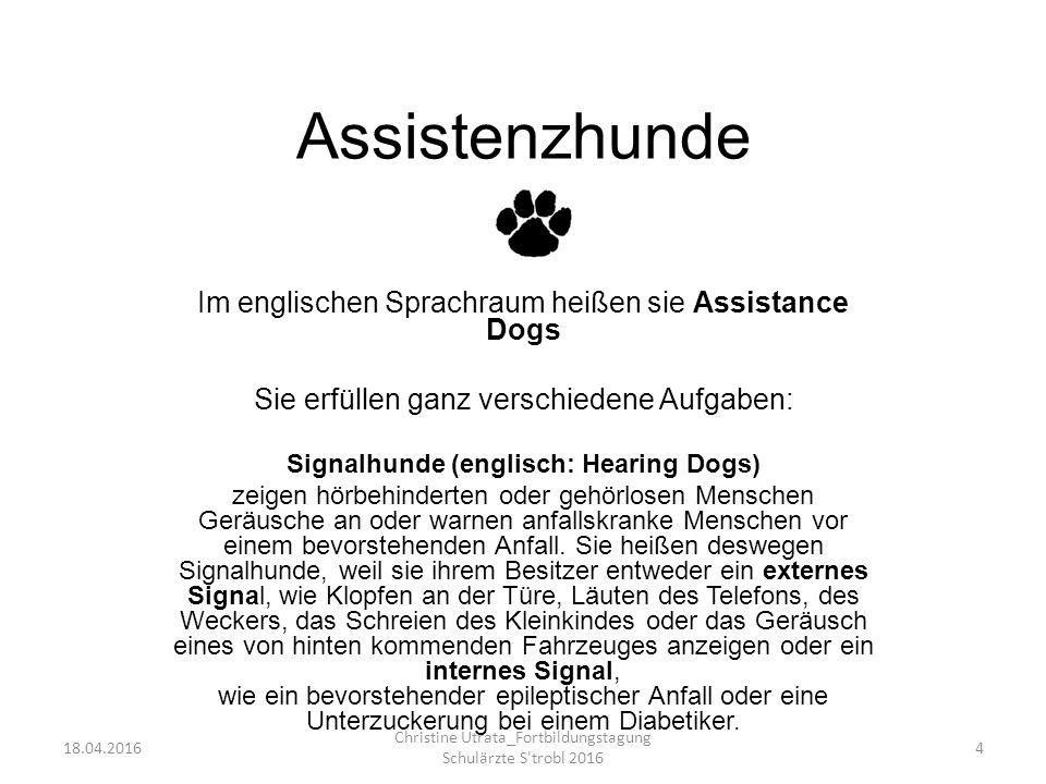 Assistenzhunde Im englischen Sprachraum heißen sie Assistance Dogs
