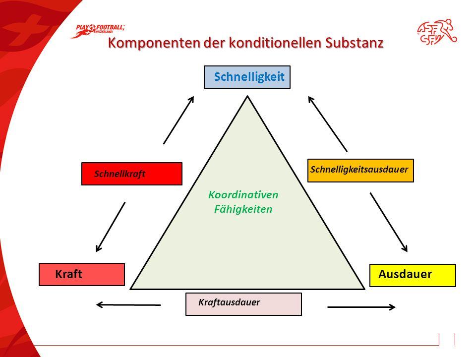 Komponenten der konditionellen Substanz