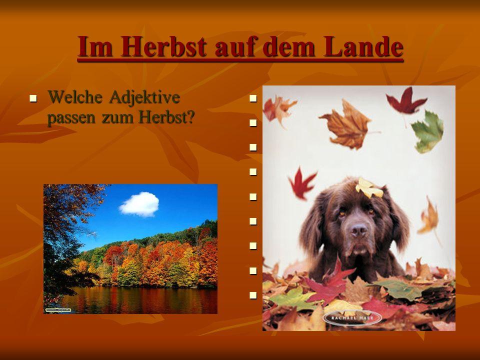 Im Herbst auf dem Lande Welche Adjektive passen zum Herbst bunt kalt