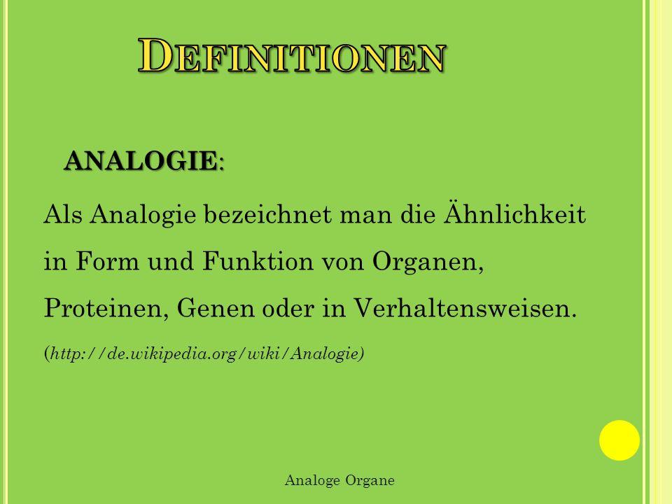 Definitionen Analogie: Als Analogie bezeichnet man die Ähnlichkeit in Form und Funktion von Organen, Proteinen, Genen oder in Verhaltensweisen.