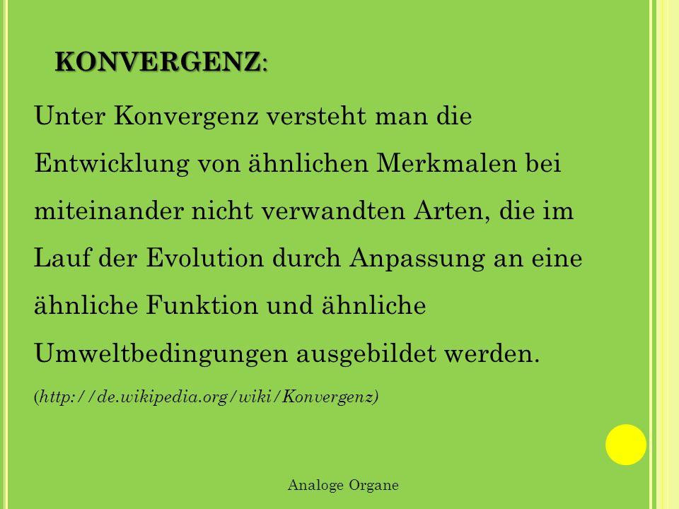Konvergenz:
