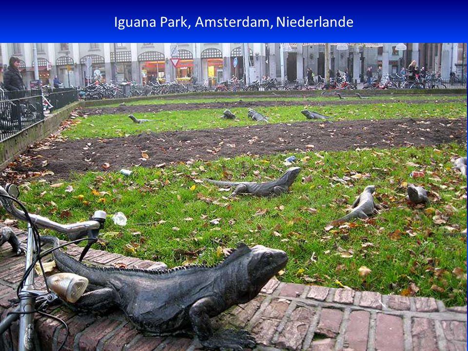 Iguana Park, Amsterdam, Niederlande