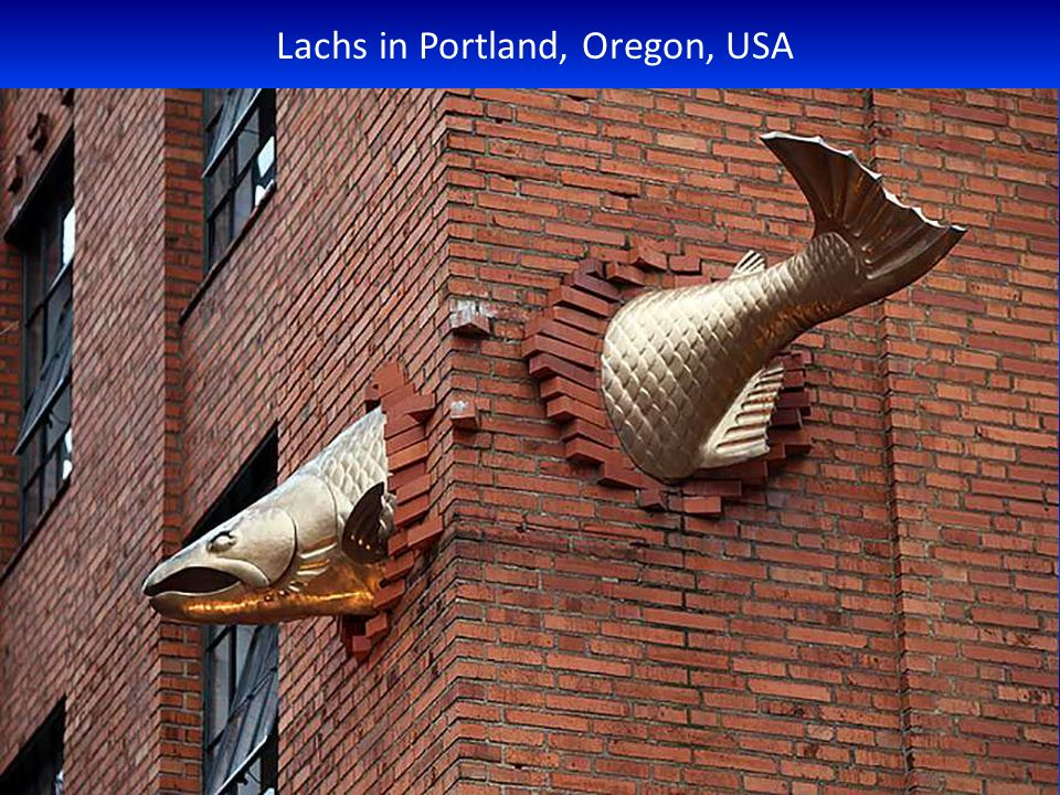 Lachs in Portland, Oregon, USA
