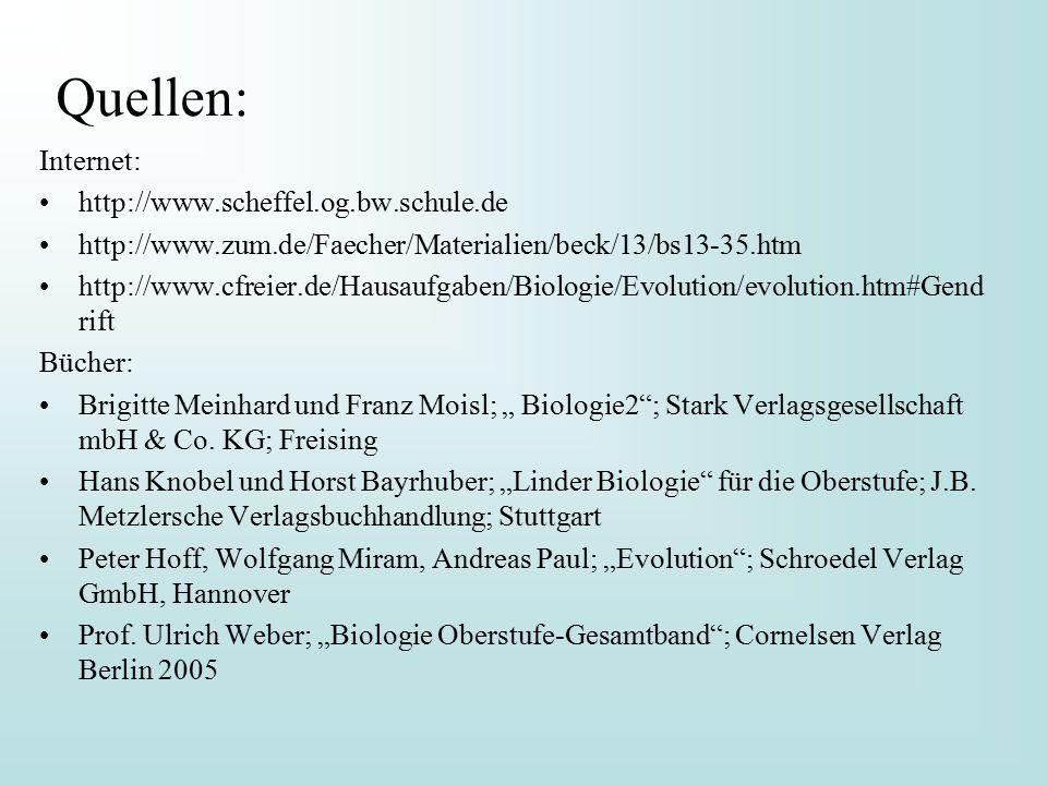 Quellen: Internet: http://www.scheffel.og.bw.schule.de
