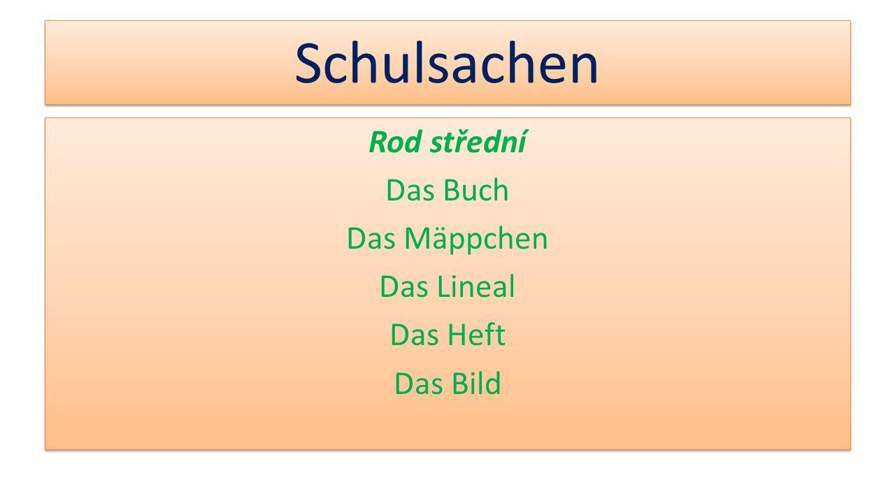 Rod střední Das Buch Das Mäppchen Das Lineal Das Heft Das Bild
