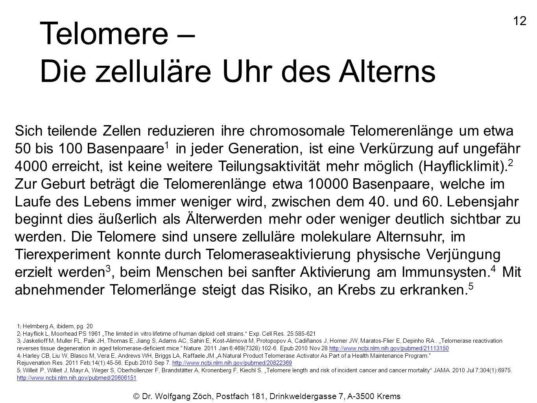 Telomere – Die zelluläre Uhr des Alterns