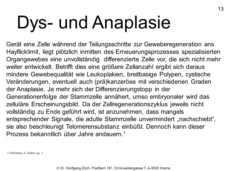 13 Dys- und Anaplasie.