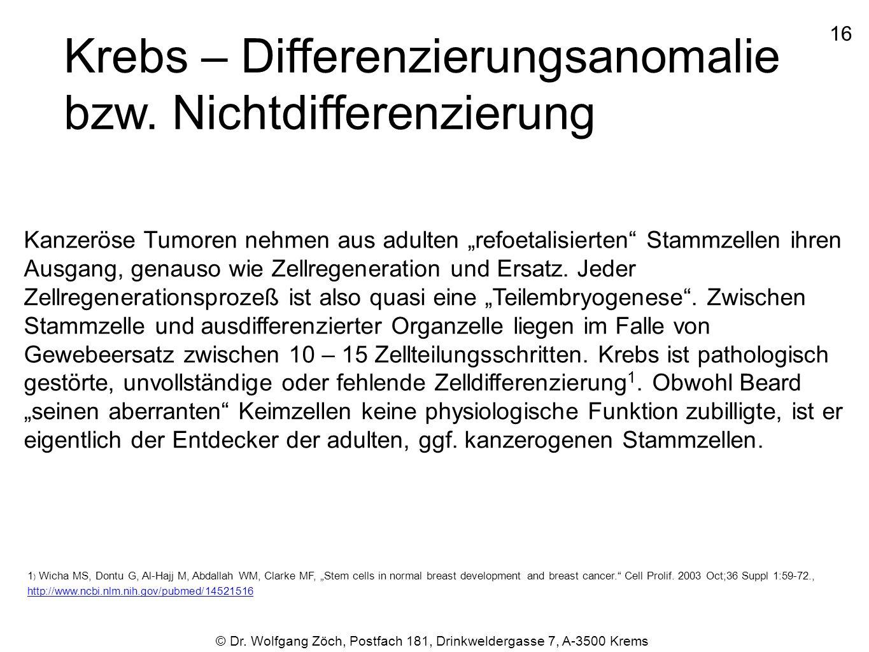 Krebs – Differenzierungsanomalie bzw. Nichtdifferenzierung