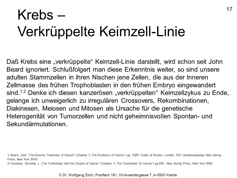 Krebs – Verkrüppelte Keimzell-Linie