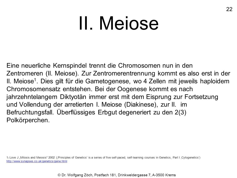 II. Meiose 22.