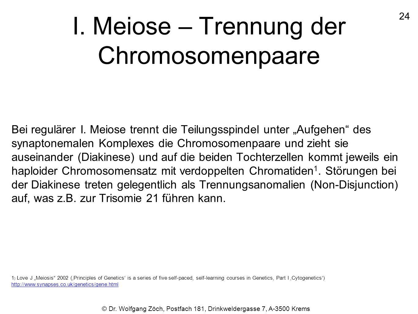 I. Meiose – Trennung der Chromosomenpaare