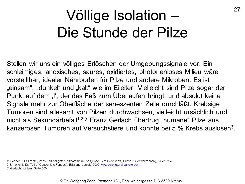 Völlige Isolation – Die Stunde der Pilze