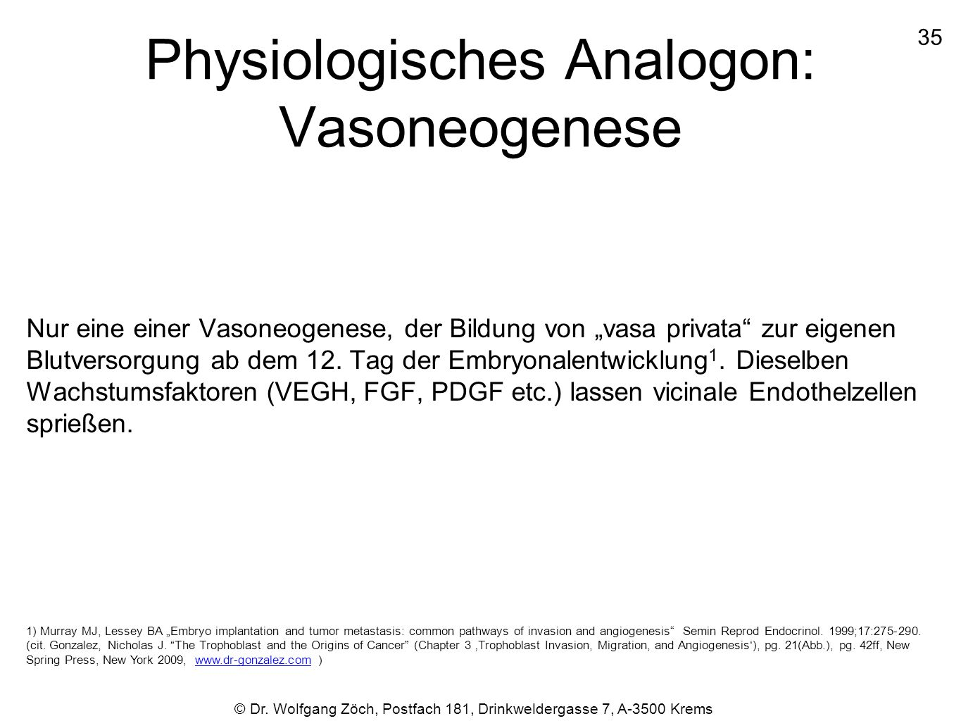 Physiologisches Analogon: Vasoneogenese
