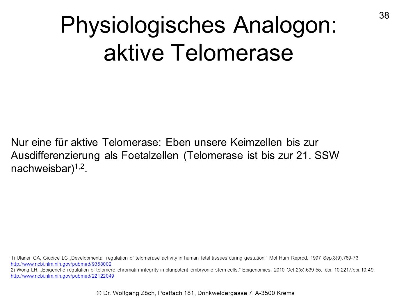 Physiologisches Analogon: aktive Telomerase