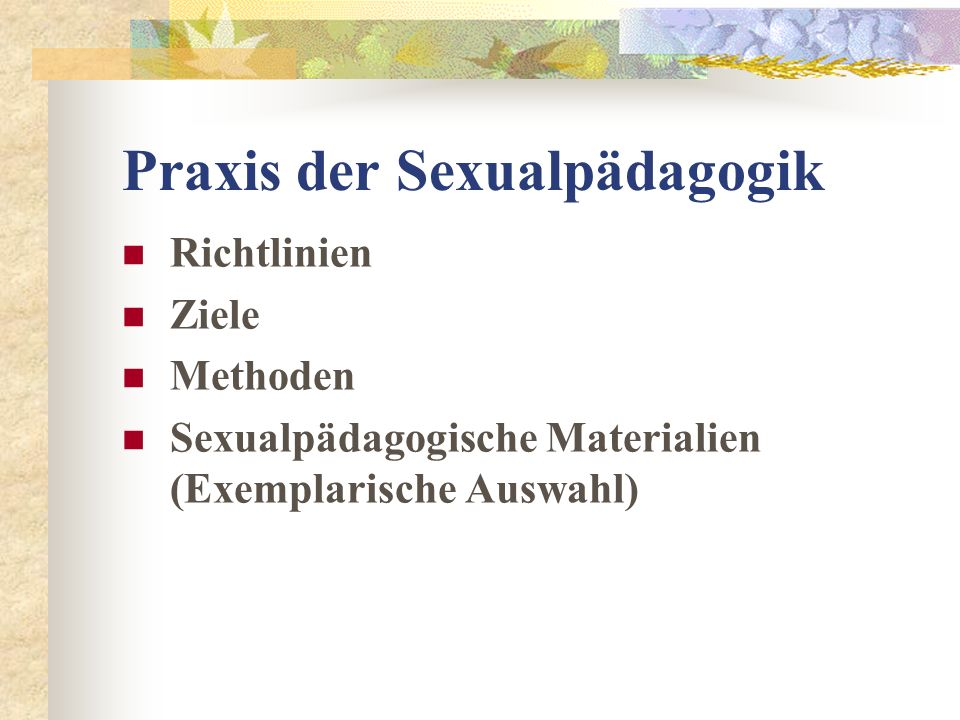 Praxis der Sexualpädagogik