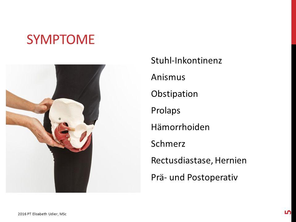 SymptomE Stuhl-Inkontinenz Anismus Obstipation Prolaps Hämorrhoiden Schmerz Rectusdiastase, Hernien Prä- und Postoperativ