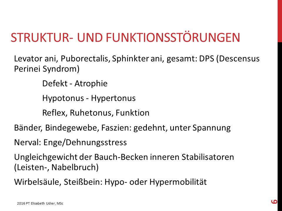 Struktur- und Funktionsstörungen