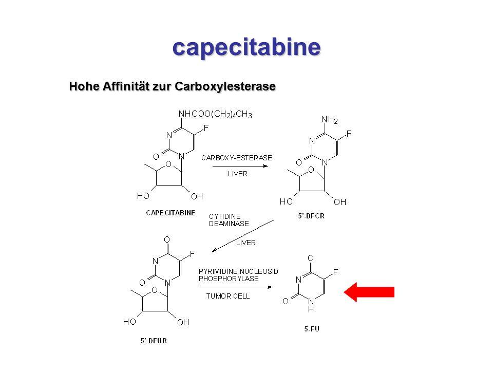 capecitabine Hohe Affinität zur Carboxylesterase