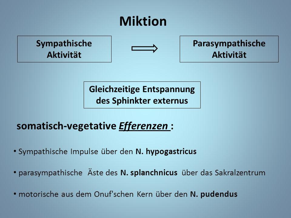 Miktion Sympathische Aktivität Parasympathische Aktivität