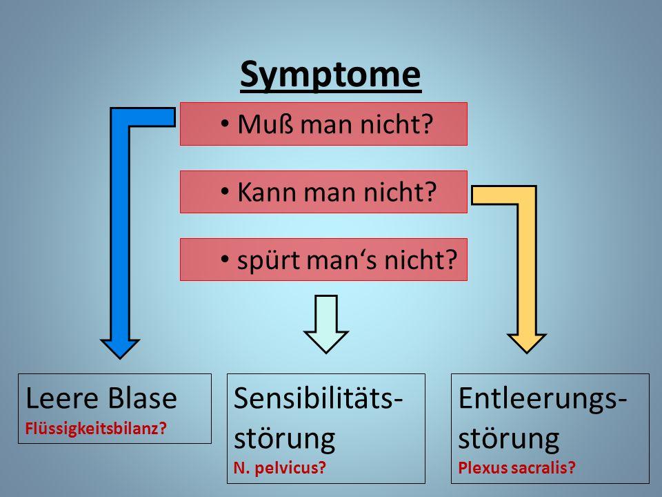 Symptome Leere Blase Sensibilitäts-störung Entleerungs-störung