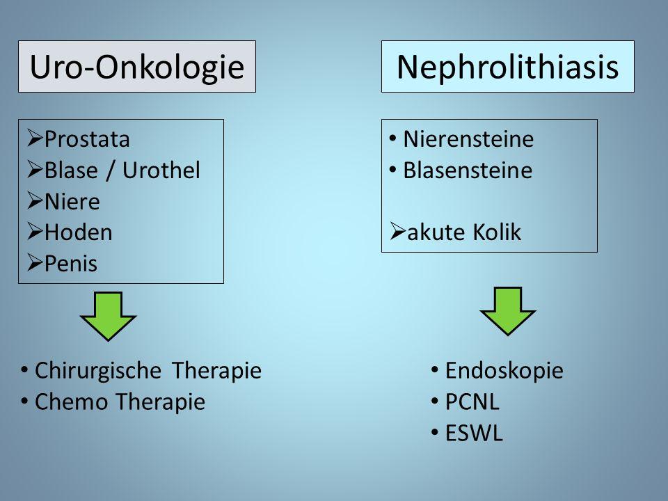 Uro-Onkologie Nephrolithiasis Prostata Blase / Urothel Niere Hoden