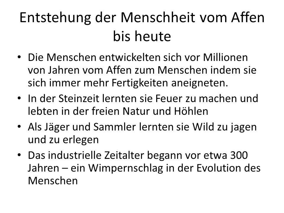 Entstehung der Menschheit vom Affen bis heute
