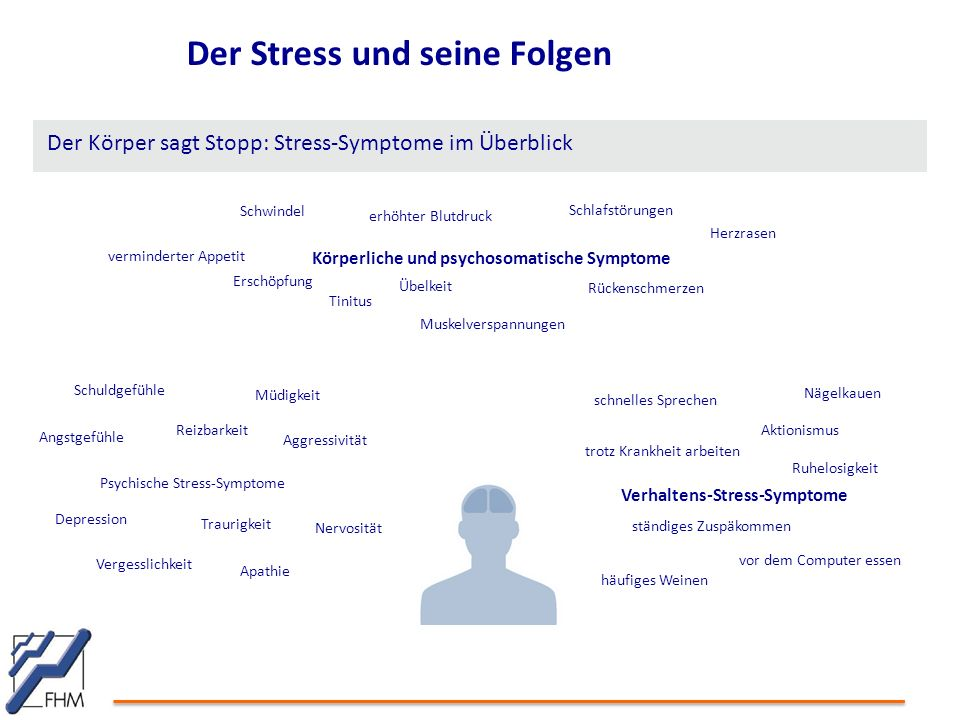 Der Stress und seine Folgen
