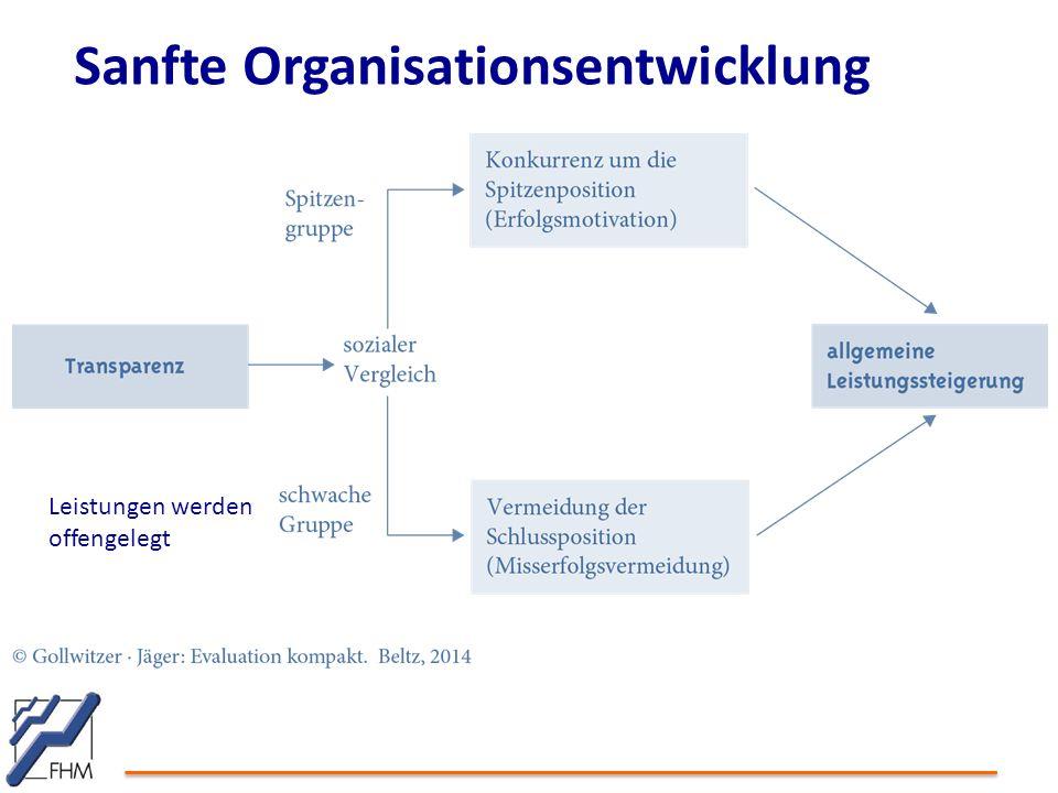 Sanfte Organisationsentwicklung