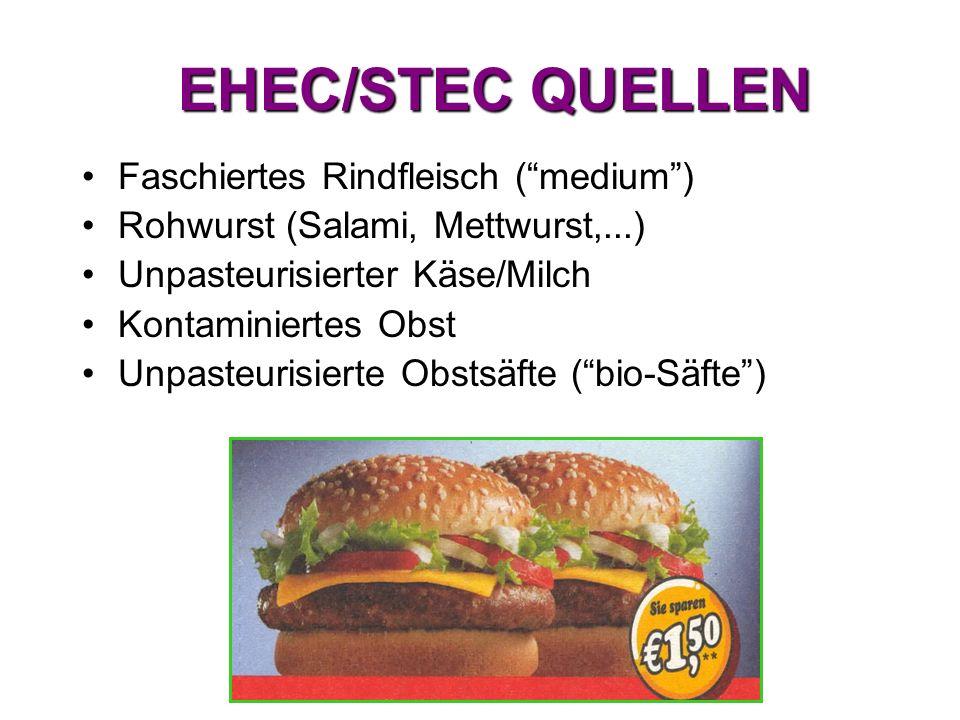 EHEC/STEC QUELLEN Faschiertes Rindfleisch ( medium )