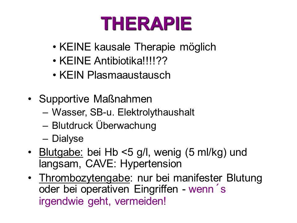 THERAPIE KEINE kausale Therapie möglich KEINE Antibiotika!!!!