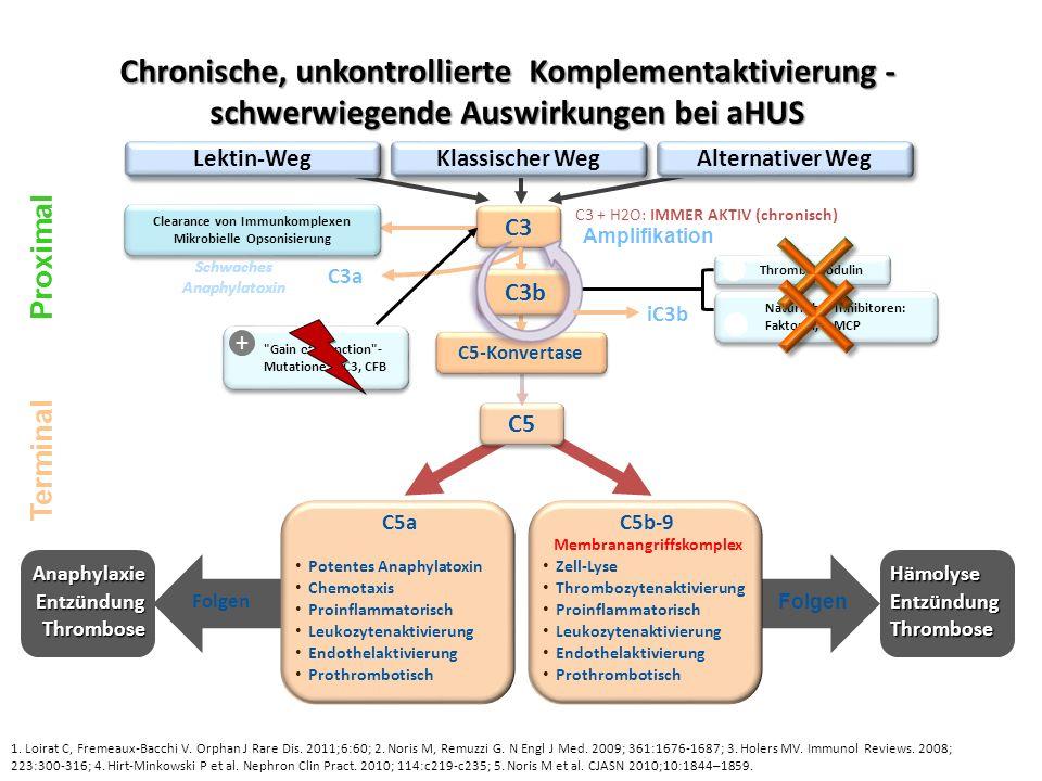 Schwaches Anaphylatoxin C5b-9 Membranangriffskomplex
