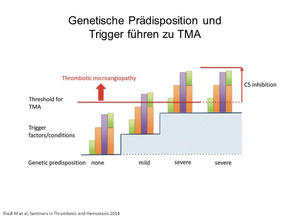 Genetische Prädisposition und Trigger führen zu TMA