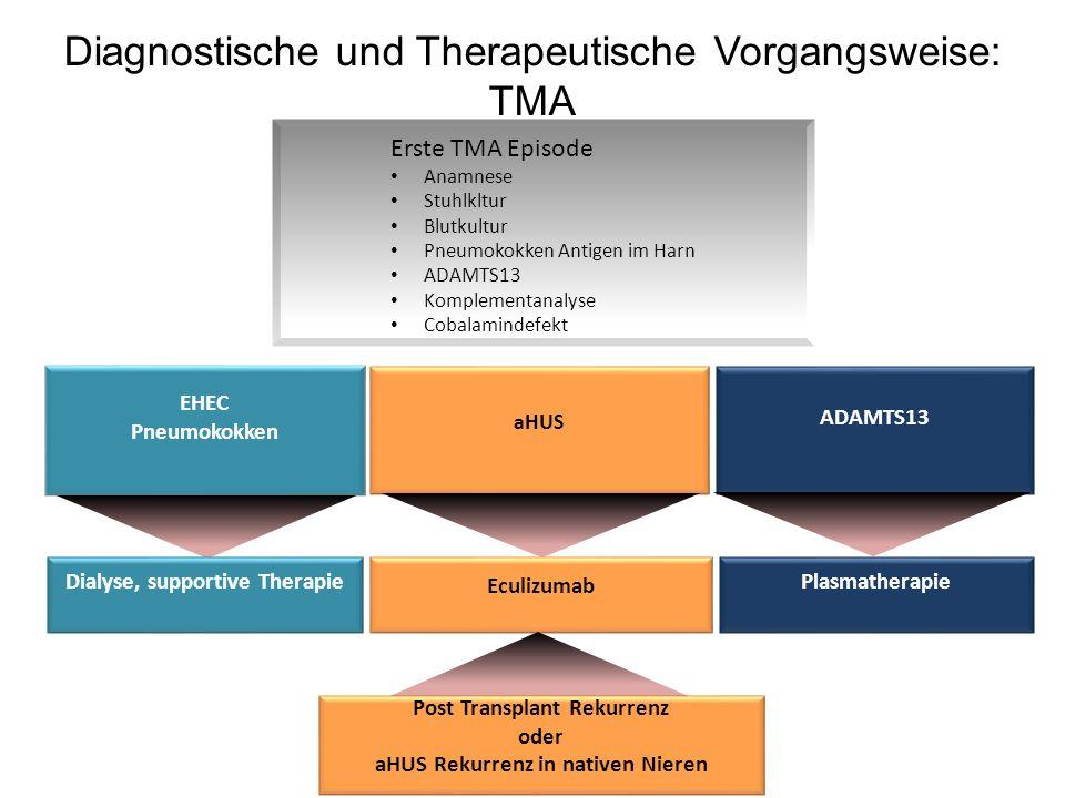 Diagnostische und Therapeutische Vorgangsweise: TMA