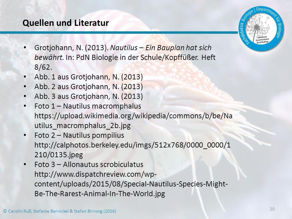 Quellen und Literatur Grotjohann, N. (2013). Nautilus – Ein Bauplan hat sich bewährt. In: PdN Biologie in der Schule/Kopffüßer. Heft 8/62.