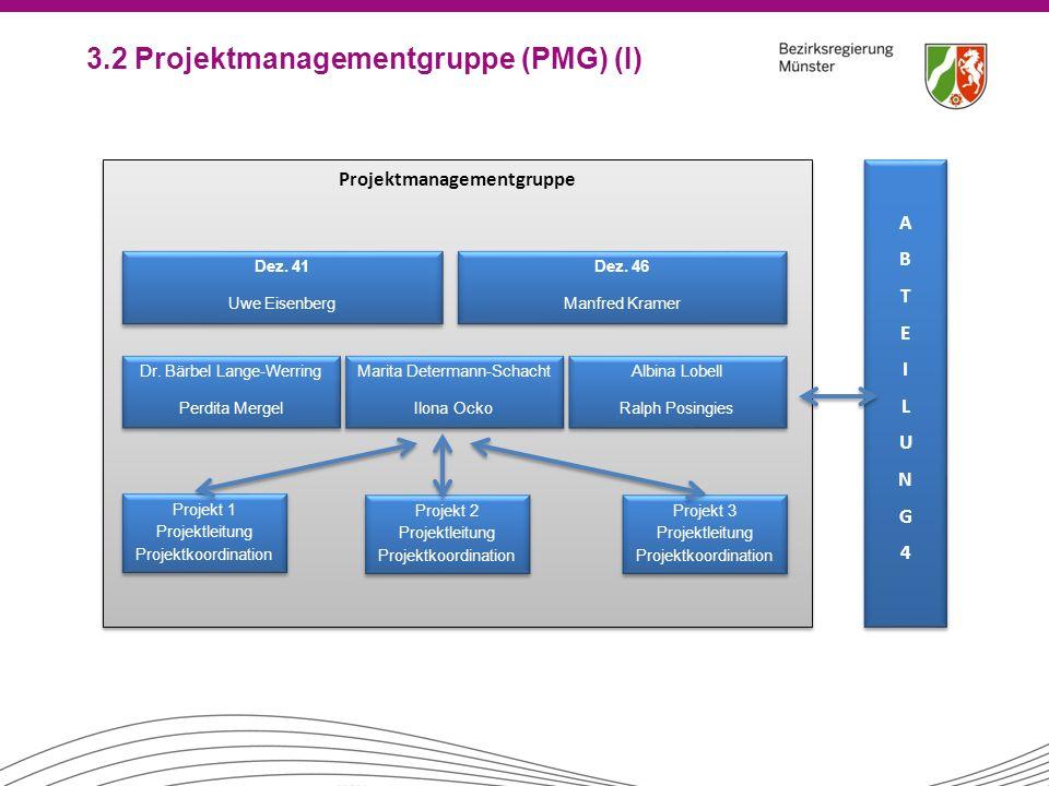 3.2 Projektmanagementgruppe (PMG) (I)