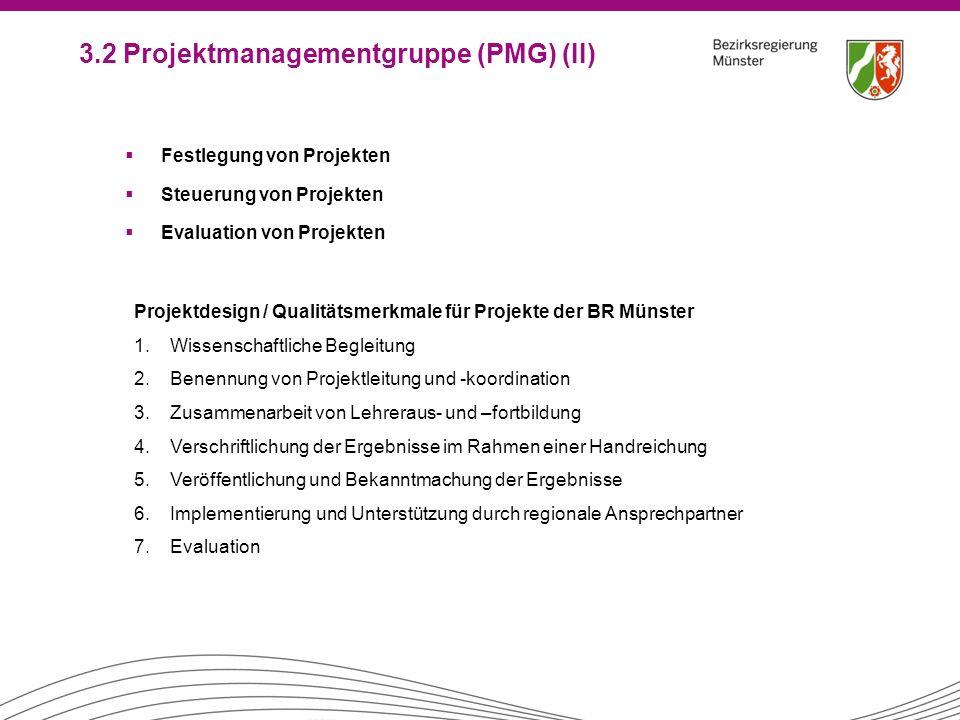 3.2 Projektmanagementgruppe (PMG) (II)
