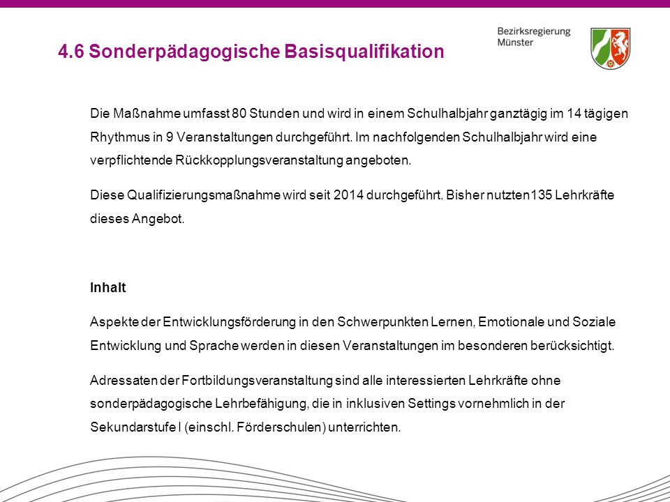 4.6 Sonderpädagogische Basisqualifikation